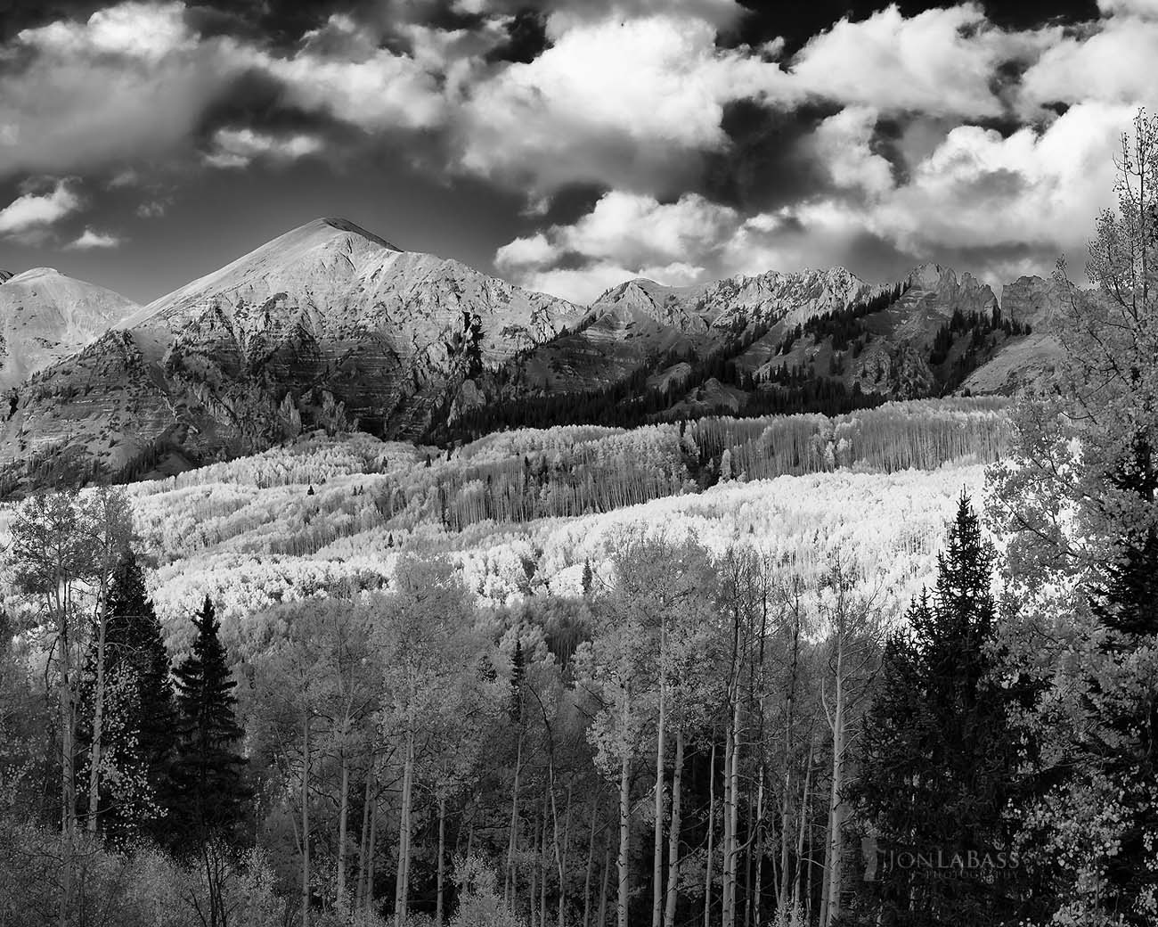 Aspen Trees, Aspens, Autumn, Black & White, Black and White, Clouds, Colorado, Colorado Rockies, Colorado Rocky Mountains, Evening, Fall, Gunnison National Forest, Kebler Pass, Rockies, Rocky Mountains, Sunset, Trees, United States