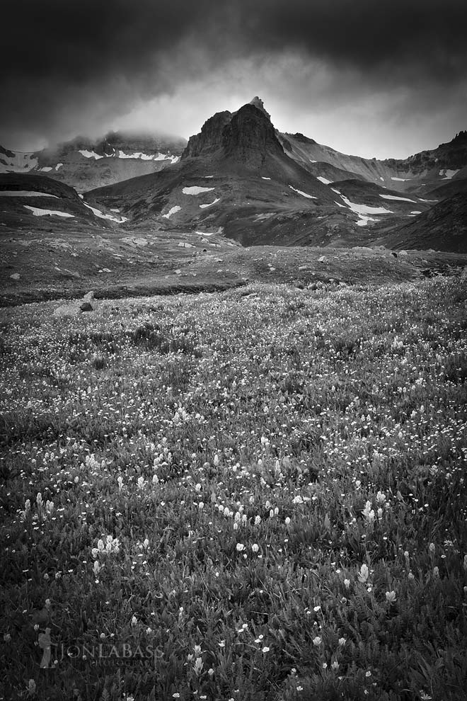 Black & White, Black and White, Clouds, Colorado, Colorado Rockies, Colorado Rocky Mountains, Flowers, Ice Lake Basin, Morning, Mountain Peaks, Mountains, Owl's Clover, Rockies, Rocky Mountains, San Juan National Forest, Storm, Summer, United States, Wildflowers