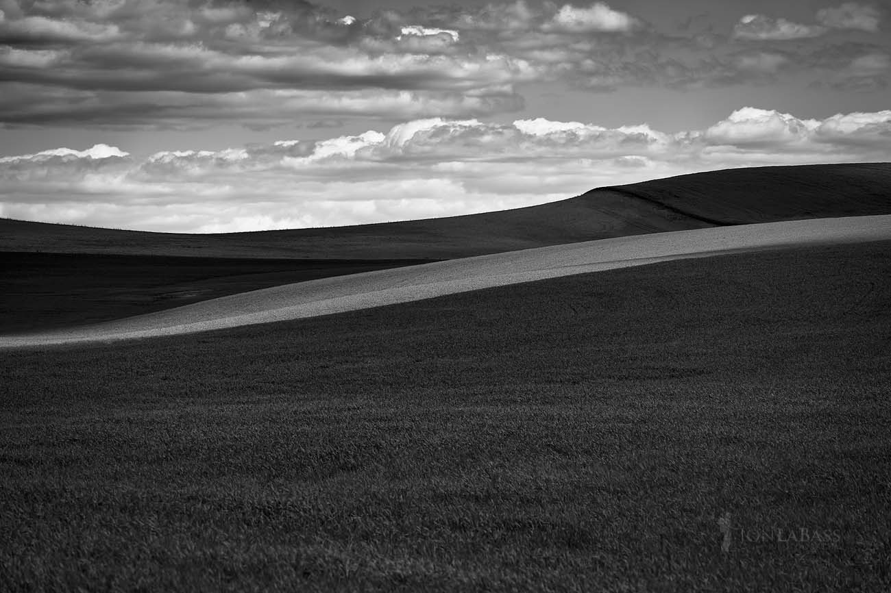Agriculture, Black & White, Black and White, Blue, Clouds, Curves, Farming, Green, Horizon, Shadows, Sky, The Palouse, United States, Washington, Wheat, Wheat field, Wheat fields, Wheatfield