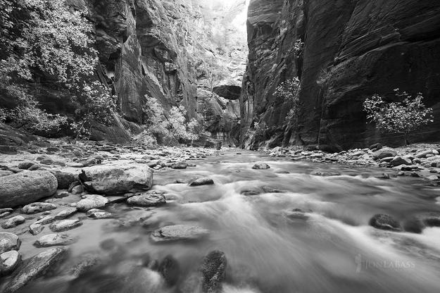 Autumn, Black & White, Black and White, National Parks, River, Rockies, Rocky Mountains, The Narrows, United States, Utah, Water, Zion
