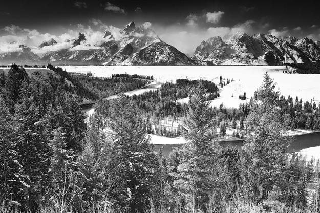 Black & White, Black and White, Clouds, Grand Tetons, Mountain Peaks, Mountains, National Parks, Snow, Tree, Trees, United States, White, Winter, Wyoming