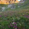 Alpenglow;Alpine Tundra;Clear Lake;Clouds;Colorado;Colorado Rockies;Colorado Rocky Mountains;Ice Lake Basin;Morning;Mountain Peaks;Mountains;Rockies;Rocky Mountains;San Juan National Forest;Sunrise;United States;Wildflowers