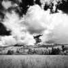 Autumn;Black & White;Black and White;Clouds;Colorado;Fall;Gunnison National Forest;Kebler Pass;Storm;United States